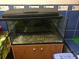 Продам два аквариума на 120л
